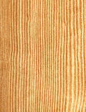 Swedish pine. Texture of wood of swedish pine with veins Stock Images