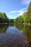 Swedish river Stock Photography