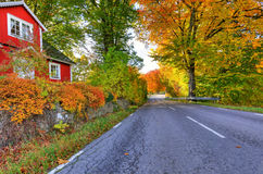 Swedish road colors in autumn season Royalty Free Stock Photography
