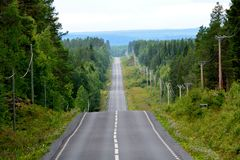 Swedish road through the forest Royalty Free Stock Photo