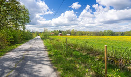 Swedish road through the spring fields Stock Photos