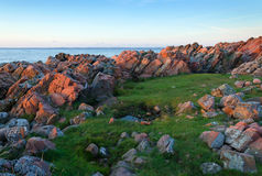 Swedish rocky coast at the sunset Royalty Free Stock Image