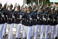 Swedish Royal Guard Stock Images