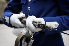 The Swedish royal guard Royalty Free Stock Photography