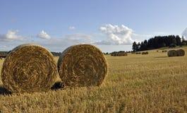 Swedish rural farmland Royalty Free Stock Image