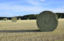 Swedish rural farmland Royalty Free Stock Photo