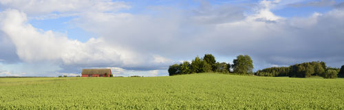 Swedish rural farmland Royalty Free Stock Photography