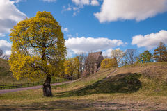 Swedish rural landscape Royalty Free Stock Photos
