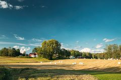 Free Swedish Rural Landscape Field Meadow With Dry Hay Bales During Harvest In Sunny Evening. Farmland With Red Farm Barn Royalty Free Stock Images - 162258779