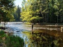 Swedish salmon area Royalty Free Stock Photography