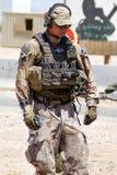 Swedish Solder at U.S Military Rescue Training Stock Photo