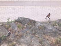 Swedish sportswoman runs around mountain in the morning Royalty Free Stock Image