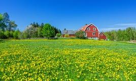 Swedish spring scenery Stock Image