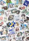 Swedish stamps Stock Images