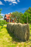 Swedish summer contrasts. Beautiful summer landscape of traditional Swedish village stock image