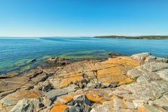 Swedish summer sea coast landscape Royalty Free Stock Images