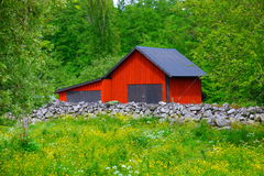 Swedish Summer urban landscape Royalty Free Stock Photo