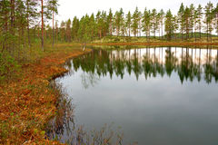 Swedish tarn Royalty Free Stock Image