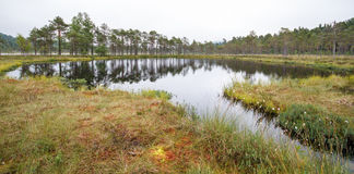 Swedish tarn Stock Photo