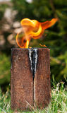 Swedish torch Stock Image