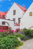 Swedish town Visby Stock Image
