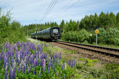 Swedish train in a summer landscape. SMALAND, SWEDEN - JUNE 14, 2015: The regional train with connection to Denmark on the track in a summer landscape in the stock photos