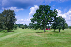 Typical Swedish golf course Royalty Free Stock Photography
