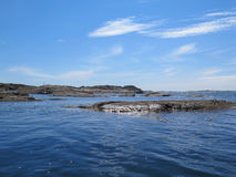 The swedish westcoast one beutiful summerday. The ocean is very still Royalty Free Stock Photo