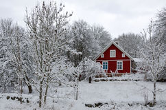 Swedish winter contrasts Royalty Free Stock Images