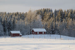 Swedish wooden houses in snowy scenic winter landscape Royalty Free Stock Images