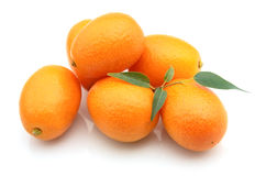 Swee kumquat Stock Photo