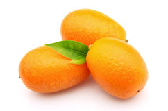 Swee kumquat Royalty Free Stock Image