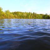 Sweeney Lake - Wisconsin. Evening view of Sweeney Lake in the beautiful northwoods of Wisconsin Royalty Free Stock Image