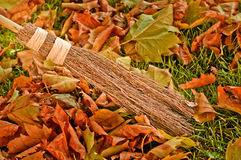 Sweeping Autumn Leaves. With natural brush Stock Photography