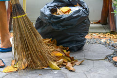 Sweeping autumn leaves with natural broom Royalty Free Stock Image
