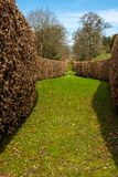A sweeping brown hedge cuts through the green garden in Derbyshire, England royalty free stock images
