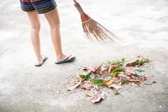 Sweeping dry leaves with broom royalty free stock photography