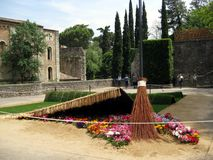 Sweeping flowers under a carpet. Girona, Catalonia Stock Image