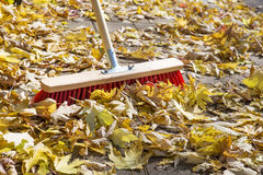 Sweeping foliage on a pavement Royalty Free Stock Image