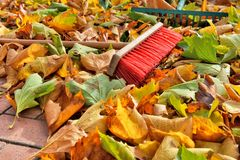 Sweeping leaves Stock Photos
