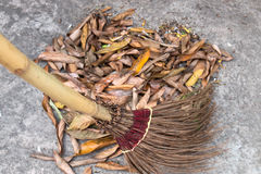Sweeping Leaves with Coconut Leave Broom Royalty Free Stock Photos