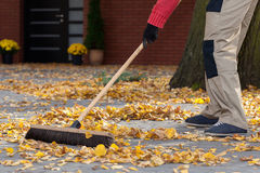 Sweeping leaves. A man sweeping leaves from his terrace Stock Photo