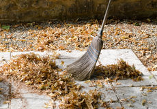 Sweeping leaves royalty free stock photos