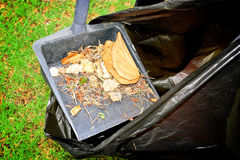 Sweeping and leaves Stock Image