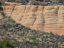 Views of sandstone and lava rock mountains and desert plants around the Red Cliffs National Conservation Area on the Yellow Knolls. Sweeping Views of sandstone Stock Photography