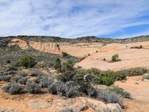 Views of sandstone and lava rock mountains and desert plants around the Red Cliffs National Conservation Area on the Yellow Knolls. Sweeping Views of sandstone Stock Photo