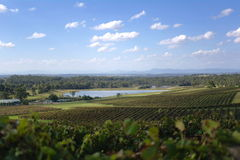 Hunter Valley Vista Stock Photo