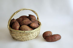 Sweet. Potato has been chosen as the World Health Organization the first health food Royalty Free Stock Images