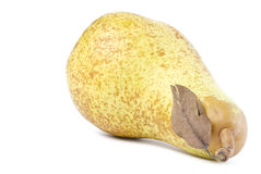 Sweet Abate Pear Stock Images