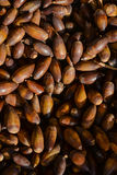 Sweet acorns closeup on market stall Stock Photos